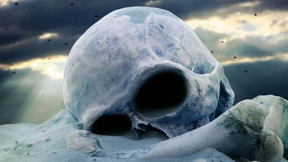 Το τέλος του ανθρώπου θα έρθει μετά την εξαφάνιση των εντόμων;